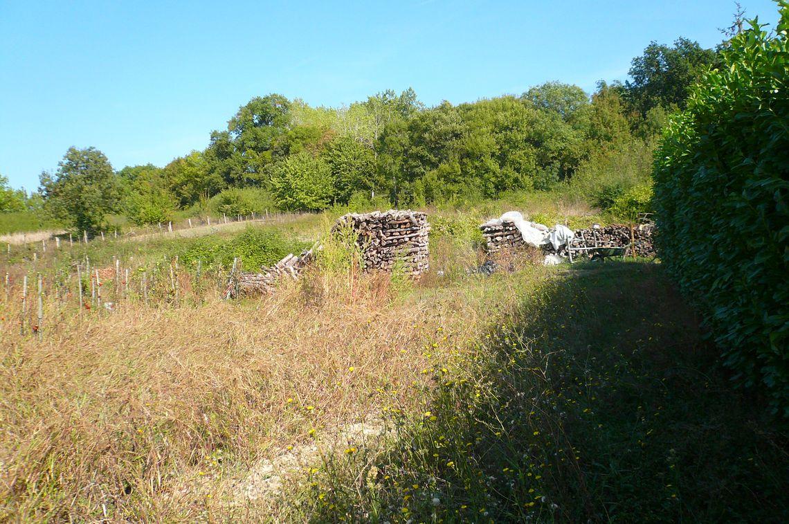 Grange en pierre avec grand jardin