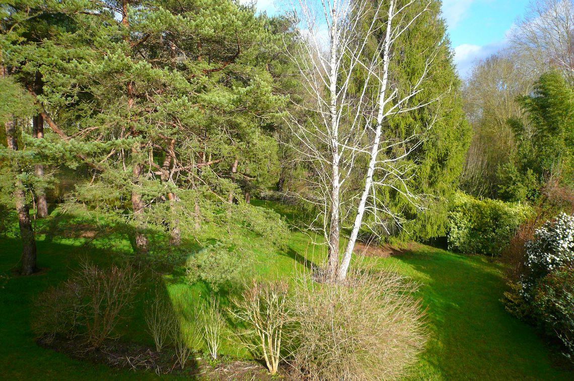 Craquez pour le charme de son jardin arboré avec ruisseau