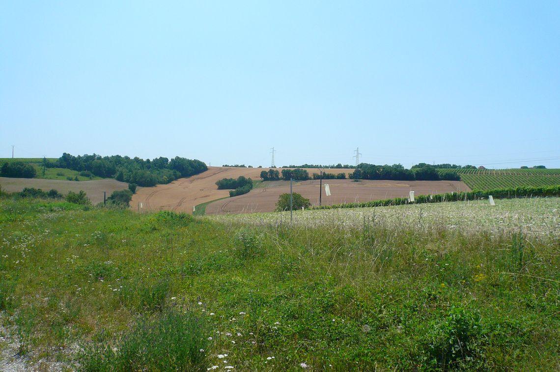 Grand terrain avec une belle vue