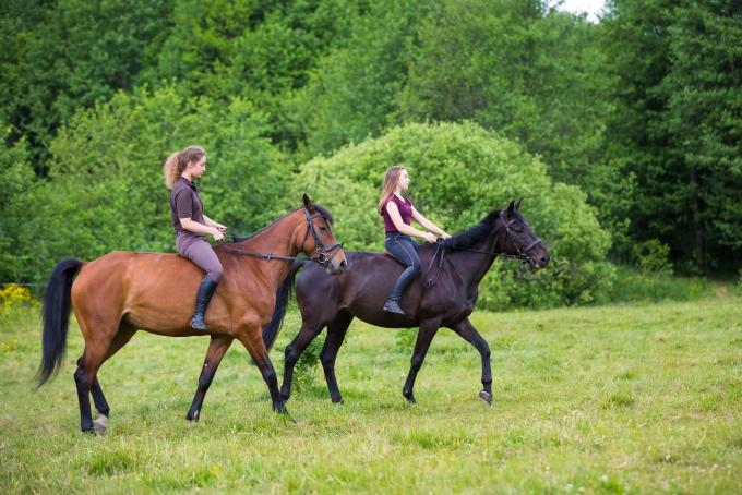 Pratiquer l'équitation en Irlande